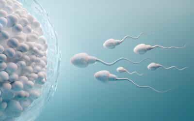 9 lucruri pe care ar trebui să le știi despre spermă